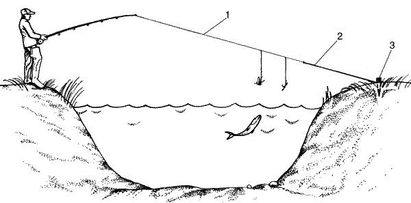Особенности ловли рыбы на тюкалку