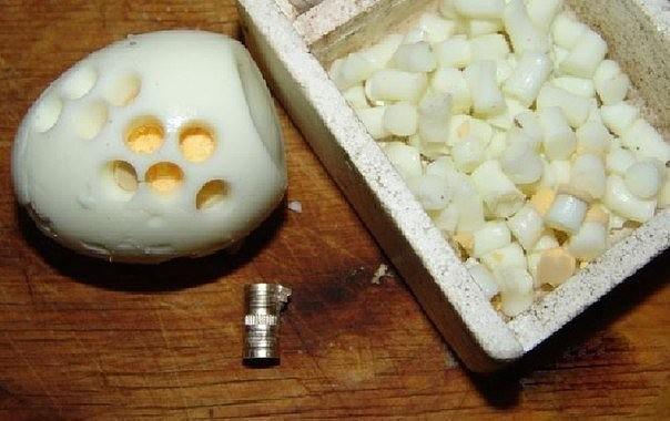 Новая наживка на карася – вареное яйцо