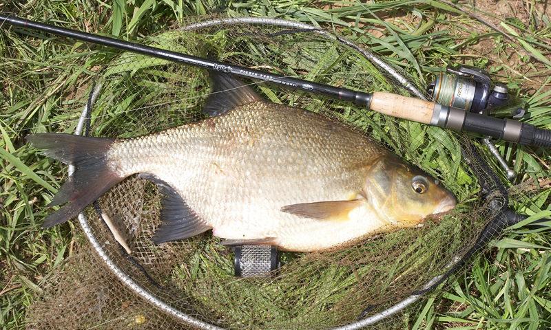 Зимняя рыбалка снасть своими руками