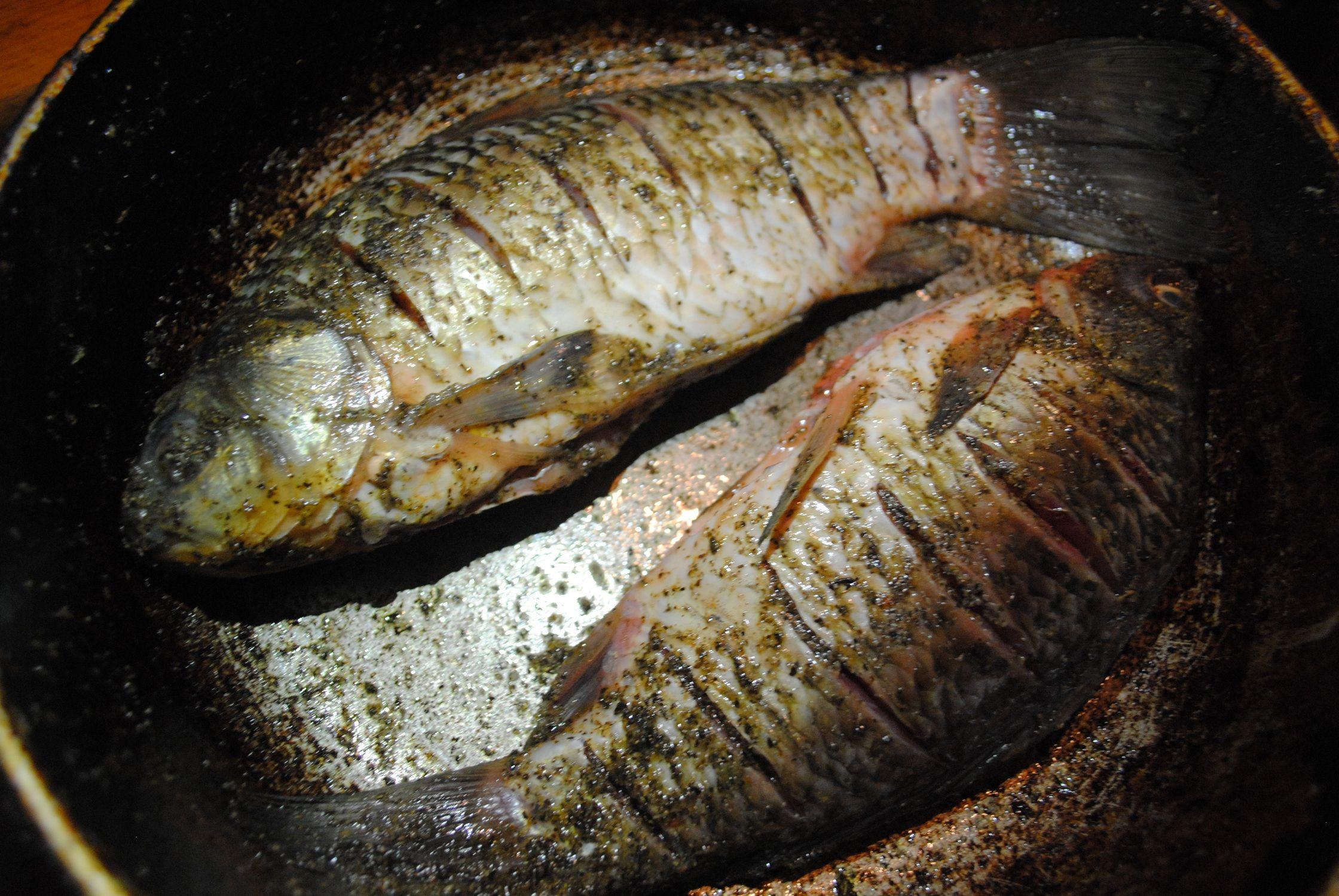 Рецепты блюд из карася с пошаговым фото