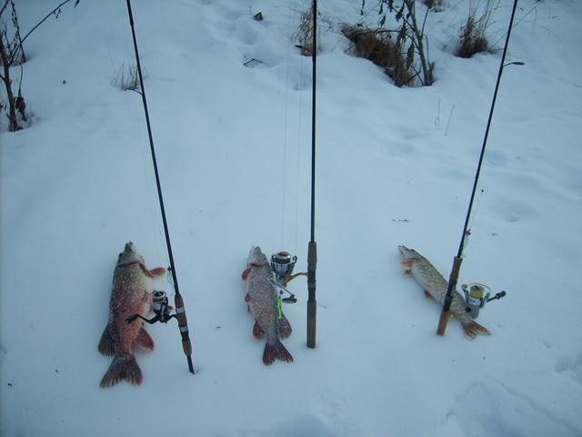 Про рыбалку на спиннинг зимой!